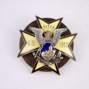 4.üksiku jalaväepataljoni rinnamärk 11541 K11964