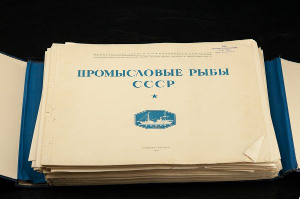 Atlas värviliste piltidega Kaubanduslik kala CCCP 1949a