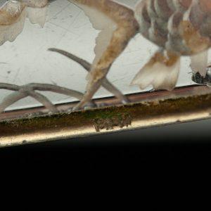"""Pross """"Akvaarium"""" 813 hõbe raam - BRONEERITUD"""